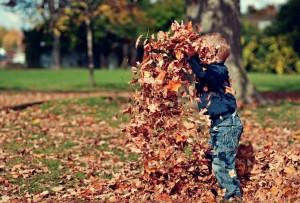 fall home maintenance tips